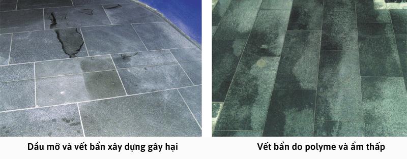Dầu mỡ và vết bẩn xây dựng gây hại